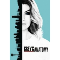 "Анатомия Страсти (Grey""s Anatomy) - 13 сезон"